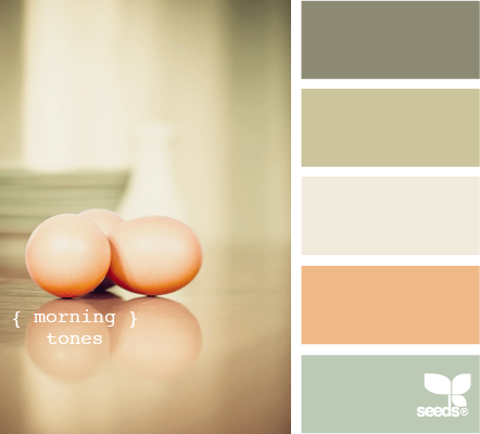 morning colors en la paleta de lanco de arriba a abajo grey - Home Decor Color Palettes