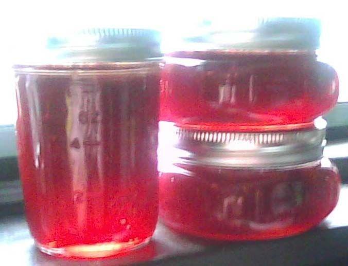the boynton homestead: strawberry~cranberry jam :)
