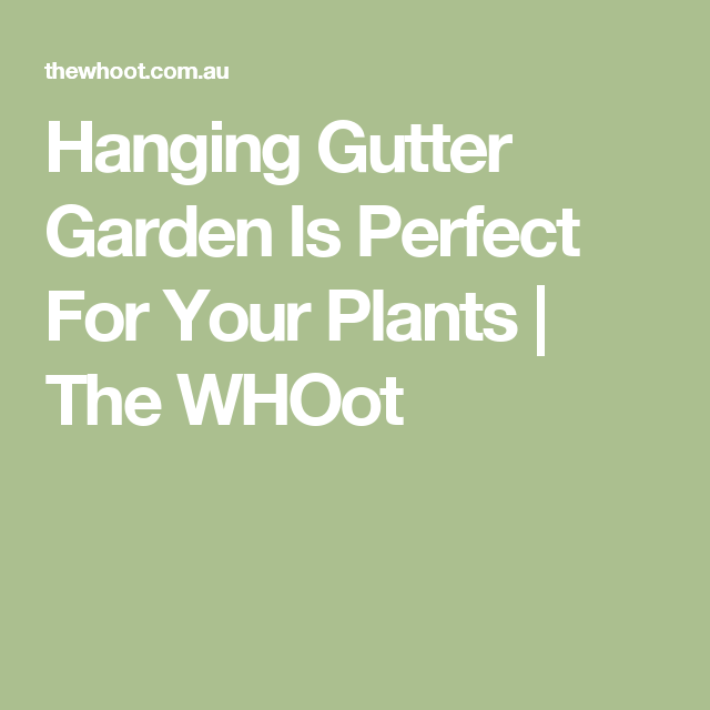 Hanging Gutter Garden Is Perfect For Your Plants   The WHOot