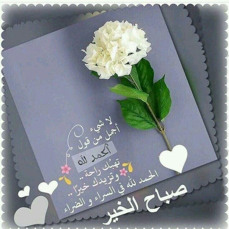 الحمد لله في السراء والضراء صباح الخير والسعادة Happy Birthday Pictures Good Morning Flowers Happy Birthday Wishes Photos