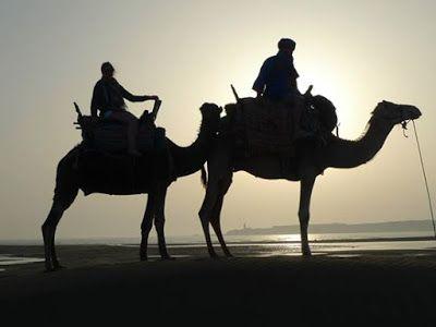 Riding a Camel in Essaouira