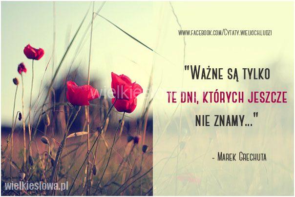 Wazne Sa Tylko Te Dni Book Cover Nick Vujicic Movie Posters