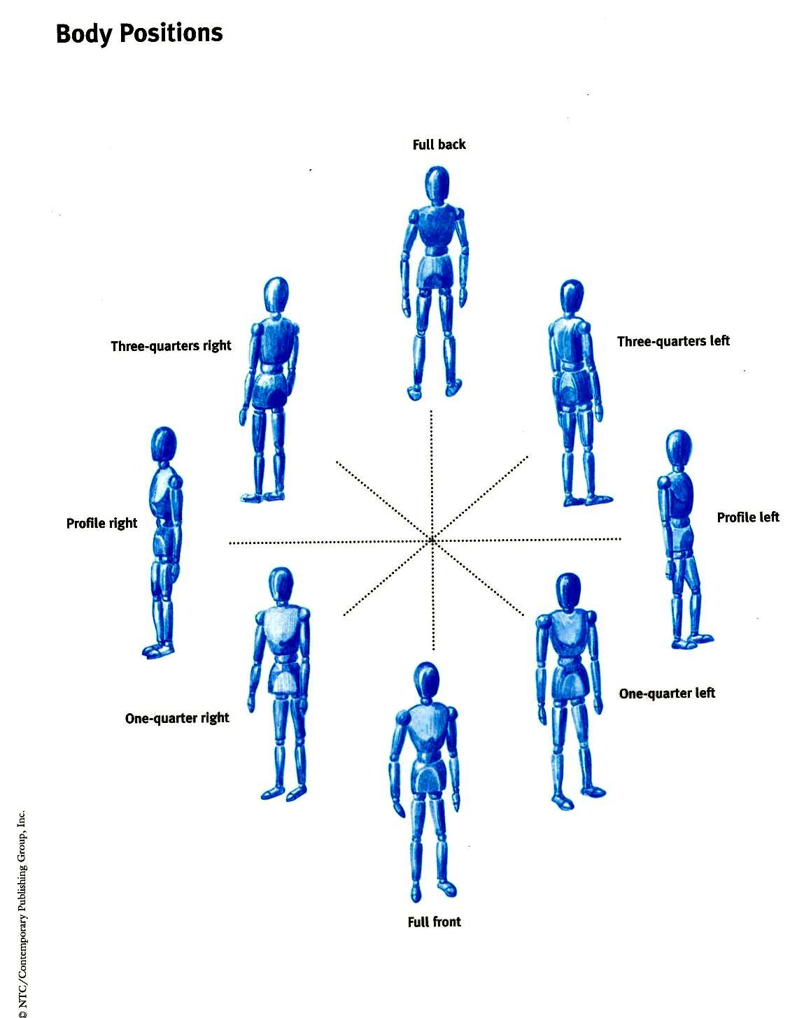 Body Positions Diagram - Trusted Wiring Diagram •