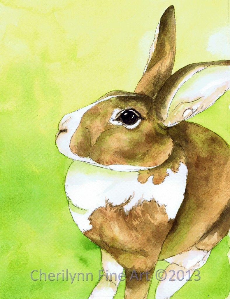 Porsche Watercolor Pen And Ink Portrait Of Adoptable Rabbit Through