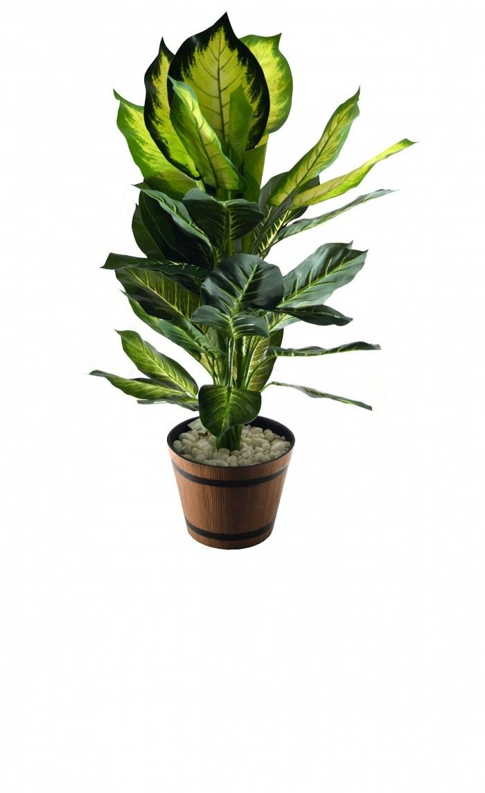 110cm Tall Artificial Dieffenbachia Floor Plant Without
