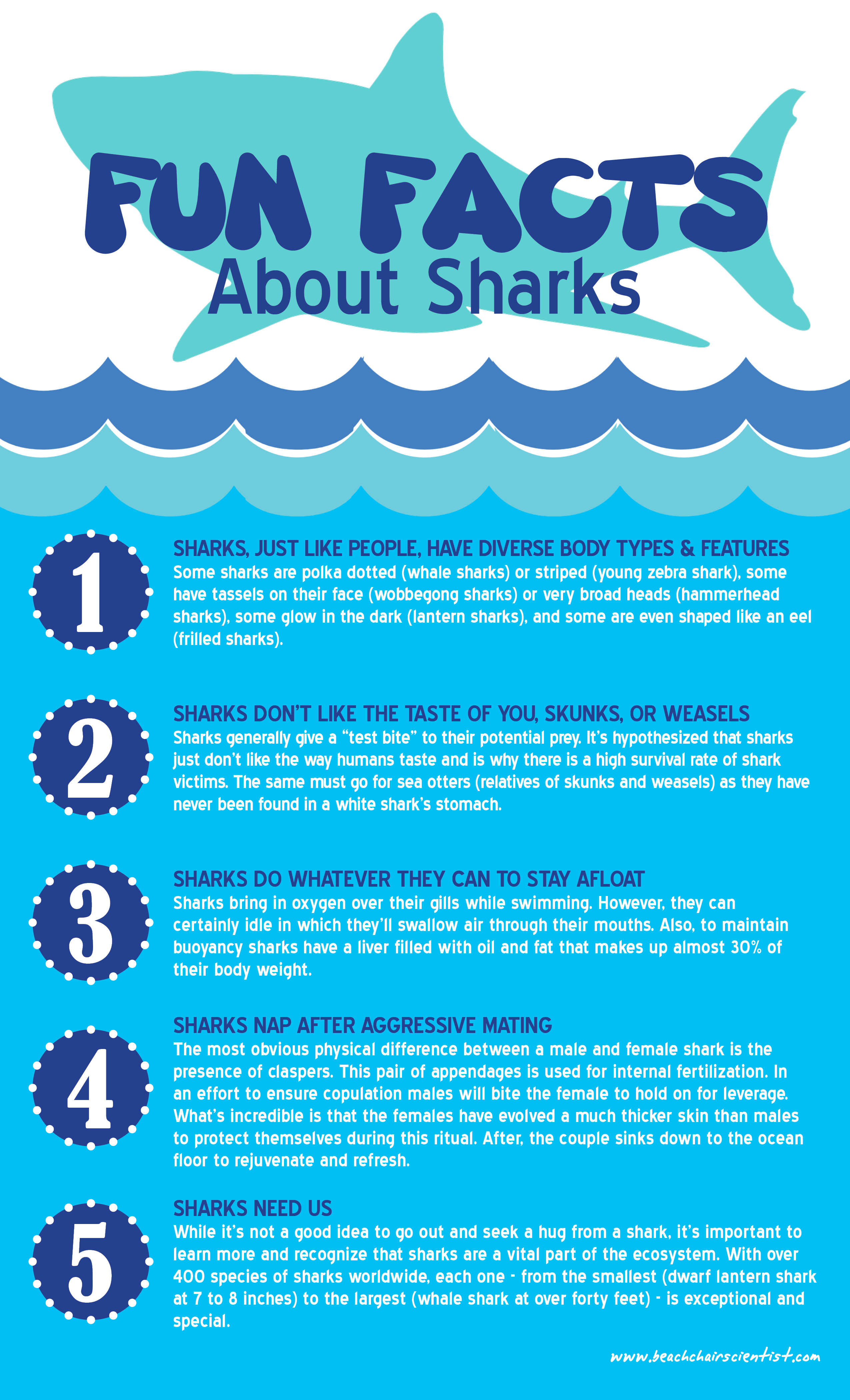 Black Shark 12# Weights