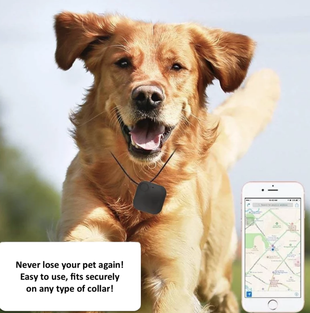Pet Tracker With Gps Pets Losing A Pet Pet Collars