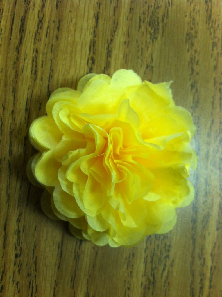 Mrs Patton S Patch Tissue Paper Flowers On Bulletin Boards