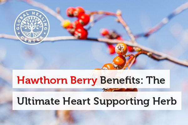 Heart Health is One of the Benefits of Consuming Hawthorn Berry