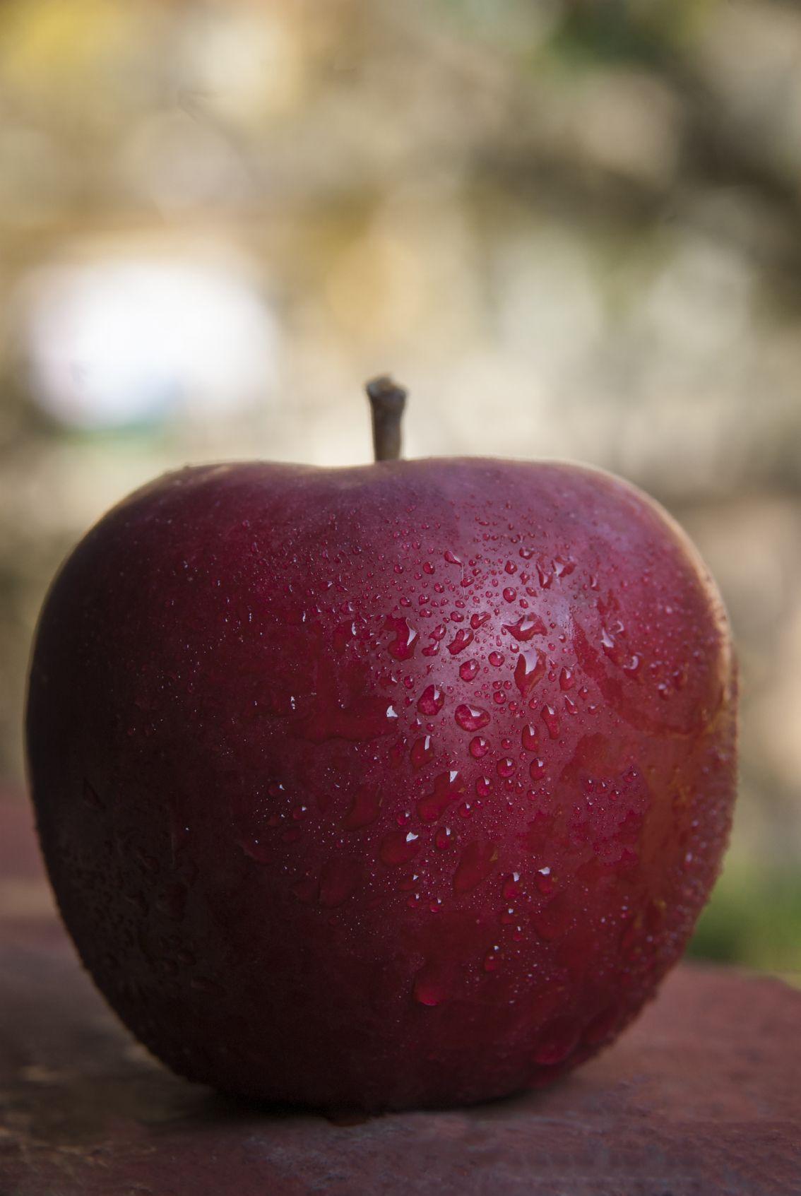 Pin de Denisse di Carlo en Manzanas Rojas | Fruta fresca y