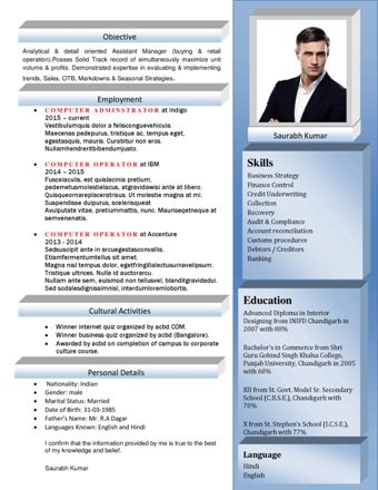 Program Manager Resume Program Manager CV Program Manager - assistant manager resume format