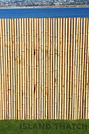 Bamboo Fence Natural 3 4 X 6 X 8 59 95 Bamboo Fence Fence