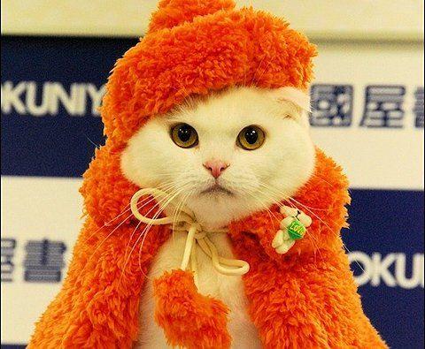 Orange is her favorite color