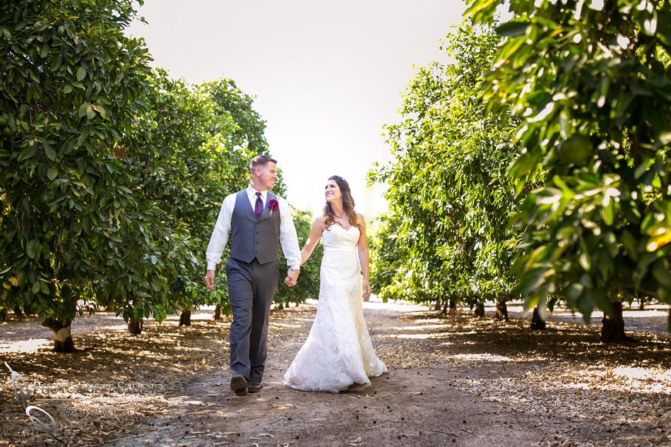 Wedding Photo At Temecula Winery Wiens Family Cellars By Photographer Amanda And Jonathon