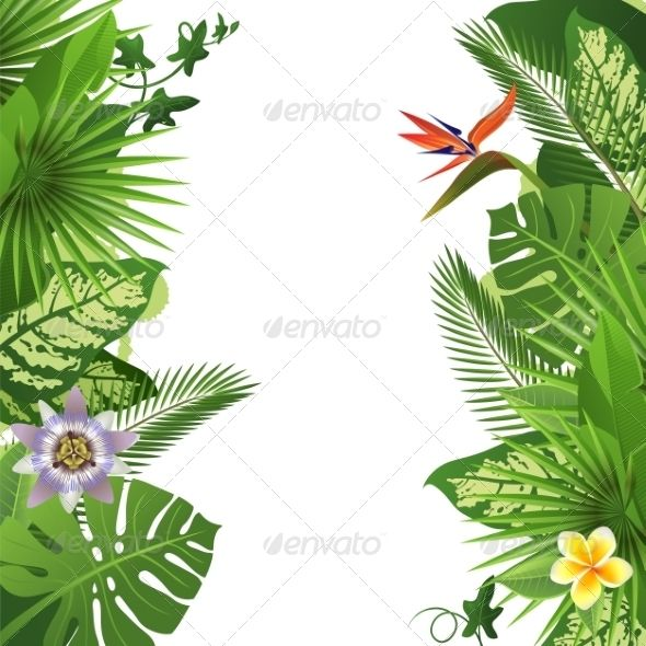 Tropical Background With Flowers And Plants In 2019