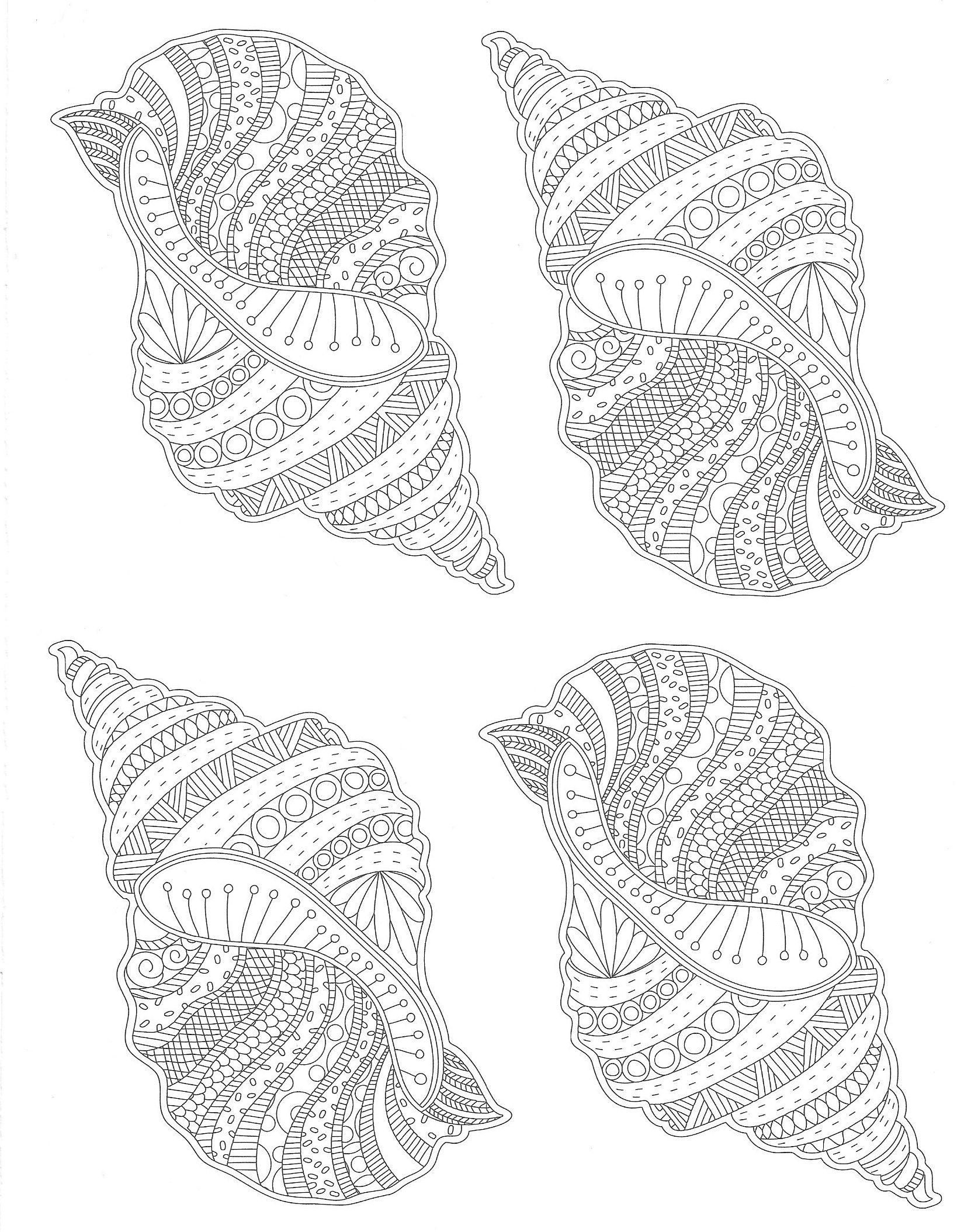 Muscheln Strand | Malvorlagen - Coloring Pages | Pinterest