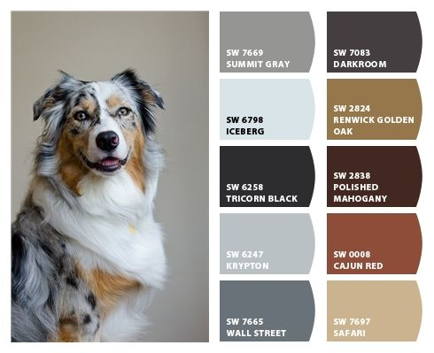 Pin On Exterior House Paint Color Palettes