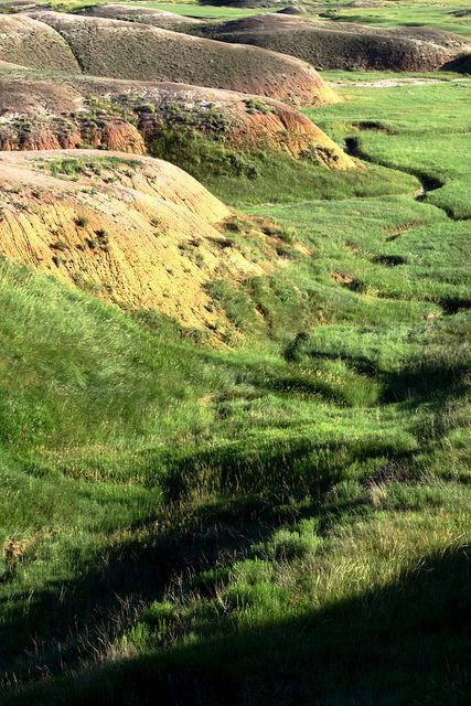 Badlands With Images Black Hills South Dakota South Dakota Places To See