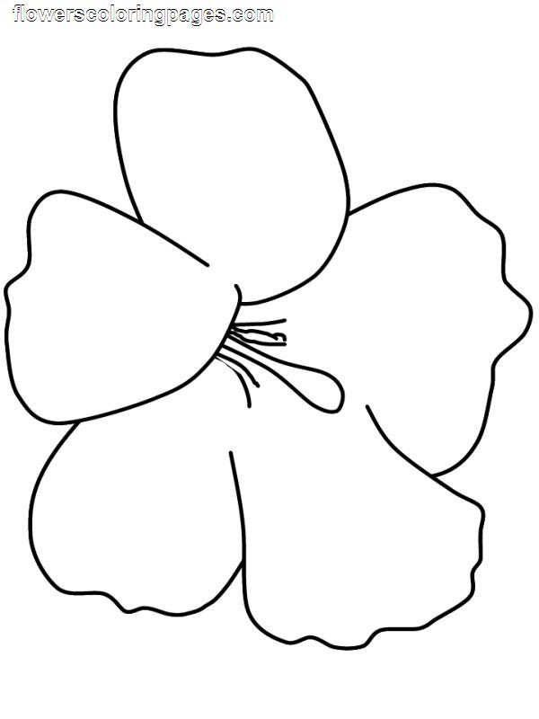 Flower Coloring Pages Hawaiian Flower Coloring Pages Free