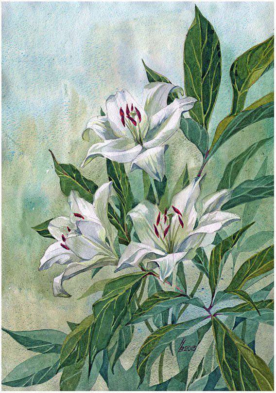 Lily and peony leaves by kosharik69 on DeviantArt