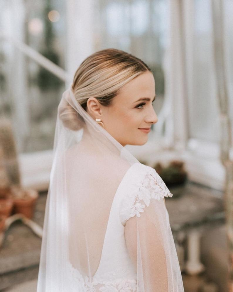 The Truth About Low Bun With Veil Is About To Be Revealed In 2020 Low Bun Wedding Hair Wedding Hairstyles With Veil Bride Hairstyles