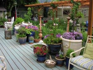 Potted Trees And Flowers Add So Much To A Deck.