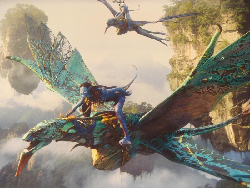 Wallpaper Neytiri Seze Avatar Hd Movies 4115: Mountain Banshees (Na'vi Name: Ikran) Are Large, Bird-like