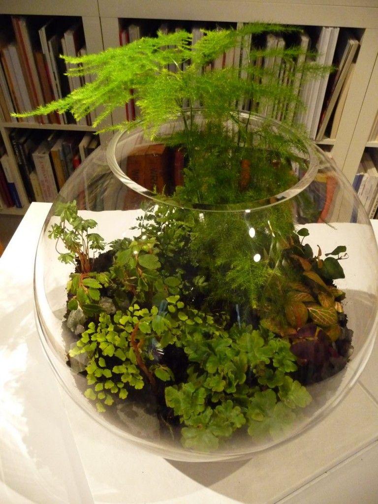 rencontre avec kali vermes et ses terrariums miniatures un si petit jardin jardins. Black Bedroom Furniture Sets. Home Design Ideas