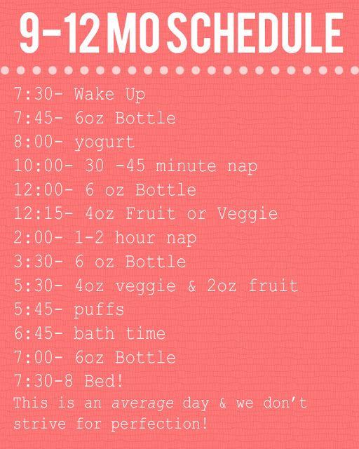 1745eceda 9-12 month baby schedule