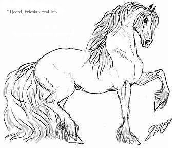 Friesian Horse Coloring Pages Horse Coloring Pages Horse