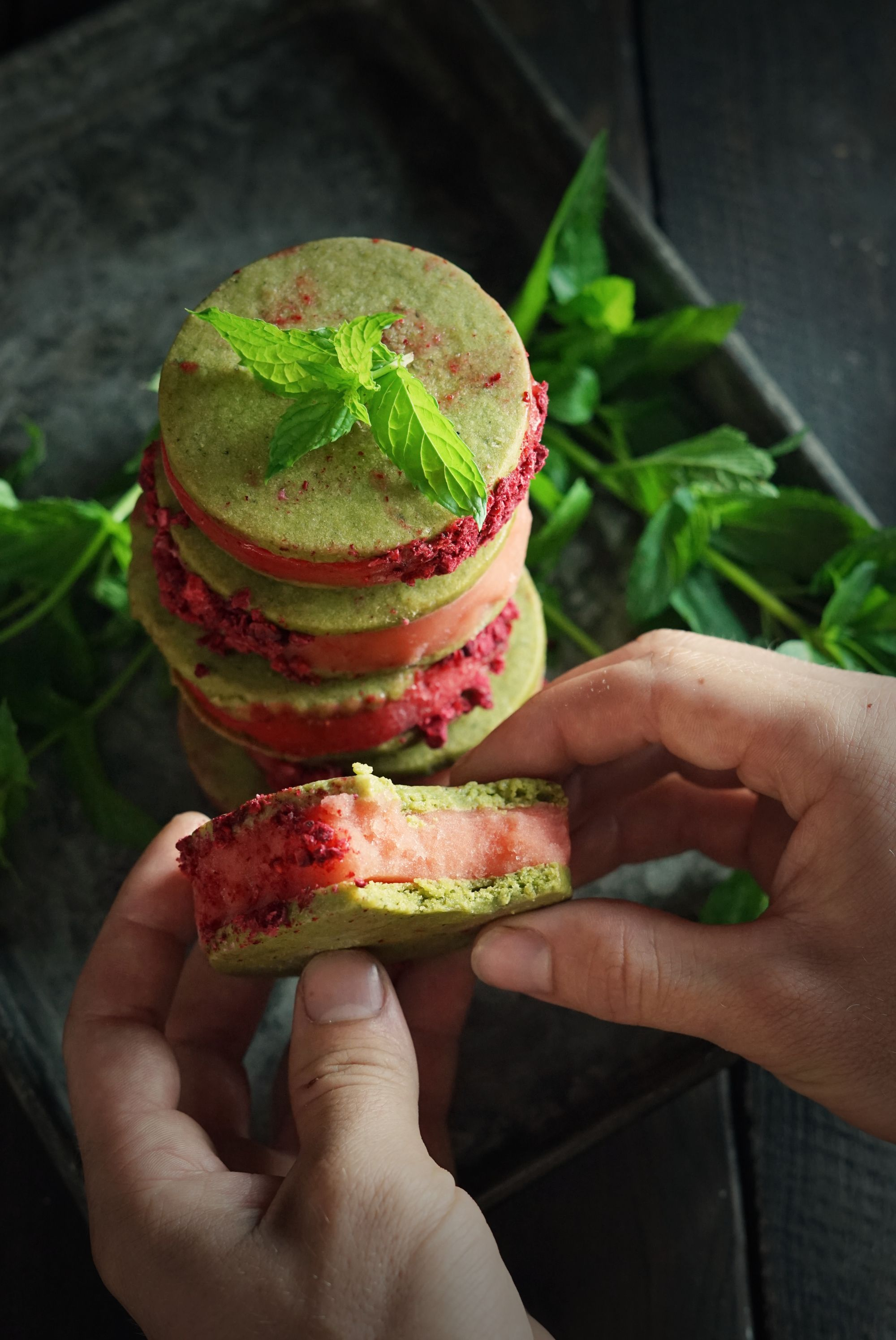 Wild Mint Sorbet Sandwiches and the Lessons of Nostalgia #freezedriedraspberries