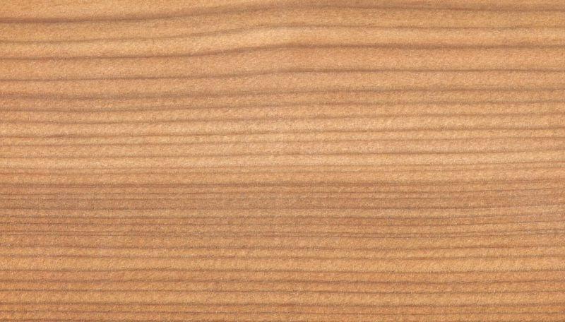 Holz Struktur europäische lärche holzstruktur holzarten