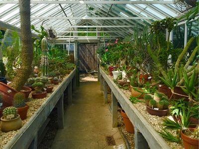 87782a3683ea9fabbfafa9b34af13e8b - City Park Botanical Gardens Plant Sale