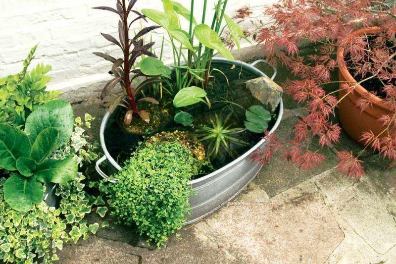 Mini Garten gestalten: Tipps und Trick für einen Garten auf ...