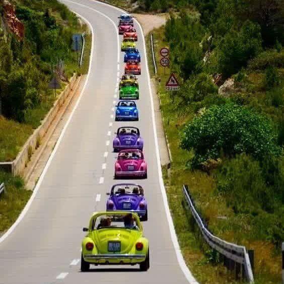 #vw #volkswagen #beetle #vwbuss #vwcamper #vwfreak #vwculture #vwporn #vwcustom #vwlove #vwkombi #vwfan #kafer #vos https://t.co/yJzlAe6XKC