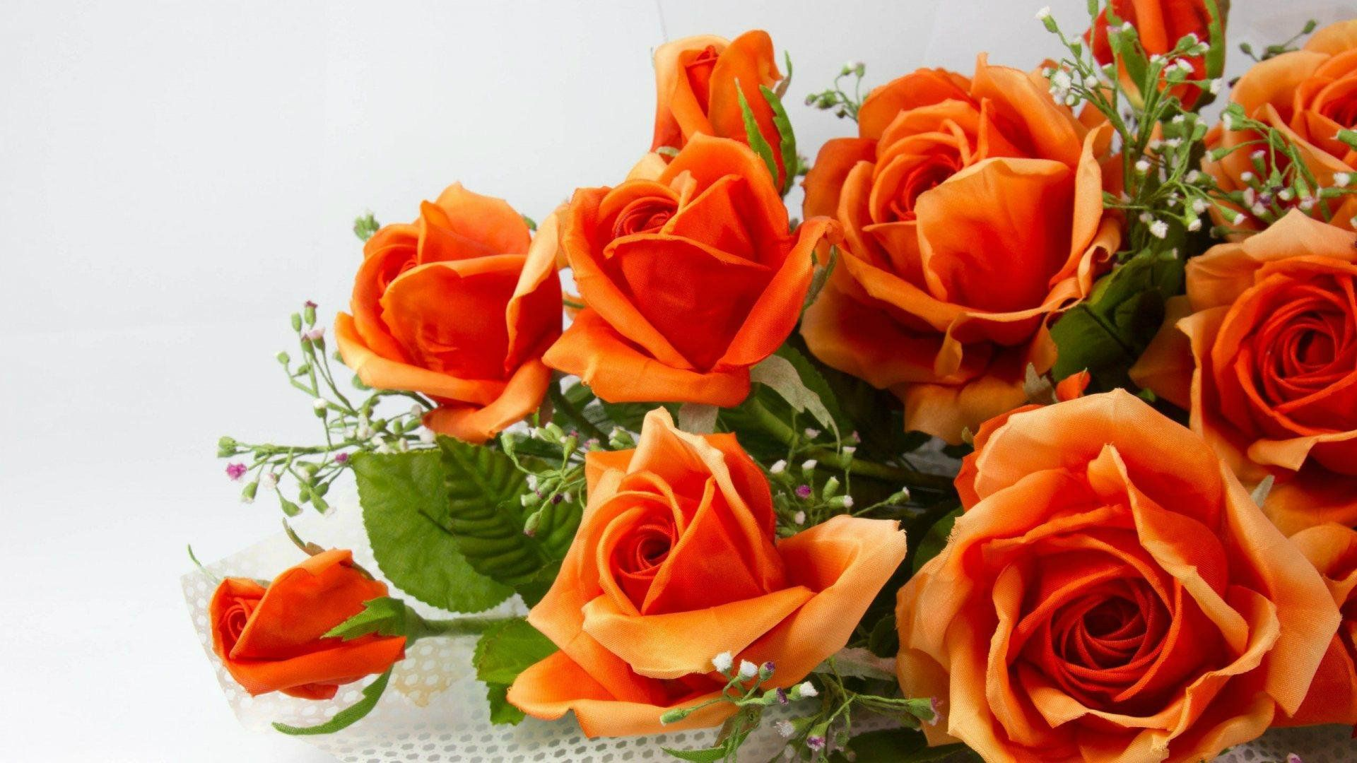 Flowers play a very important role in live. The beauty of flowers ...