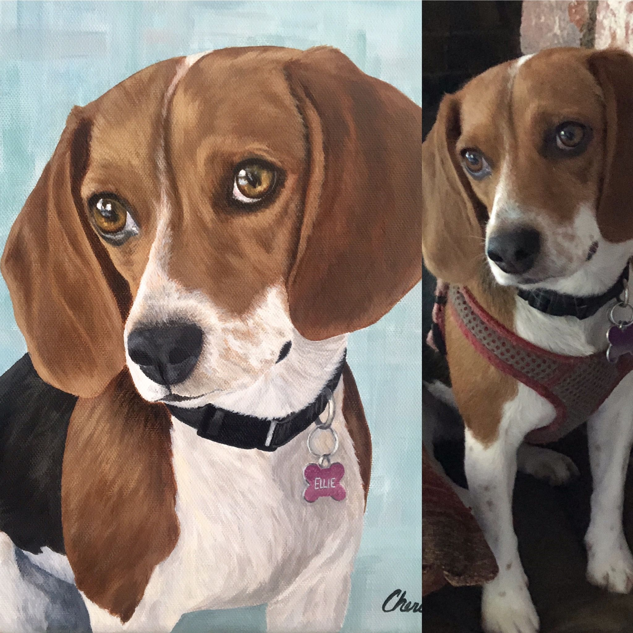 Custom Dog Portrait Realistic Beagle Puppy Original Pet Painting