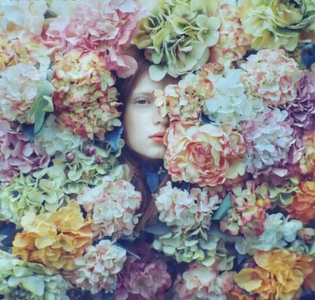 ياشبيه الورد من بيـن الزهـر نظرتك تجلي عن النفس العذاب ماتشوف العين مثلك في البشر ياعديل الروح لاتطري الغياب صابر و Trendy Flowers Flower Art Art Photography