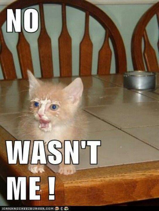 No it wasn't me!