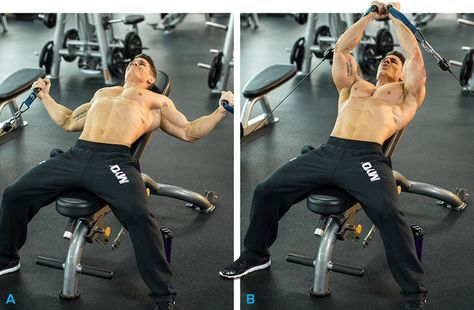 Pin On Gain Muscle