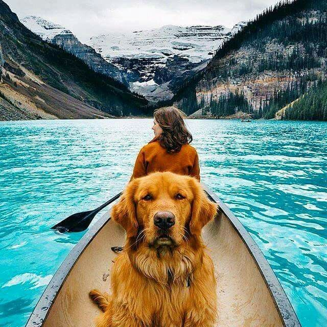 Pets Vacation Too Banff National Park Canada Photo By Hunter