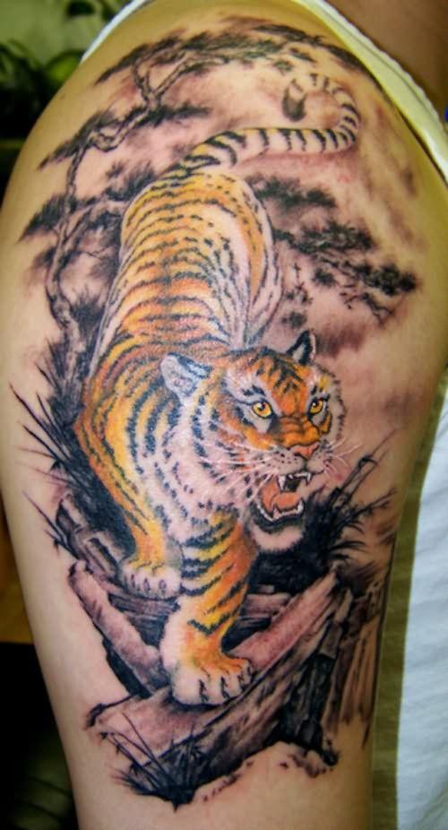 f24c855c9 Large Tiger Tattoo On Shoulder And Bicep | TATTOOS | Tiger tattoo ...