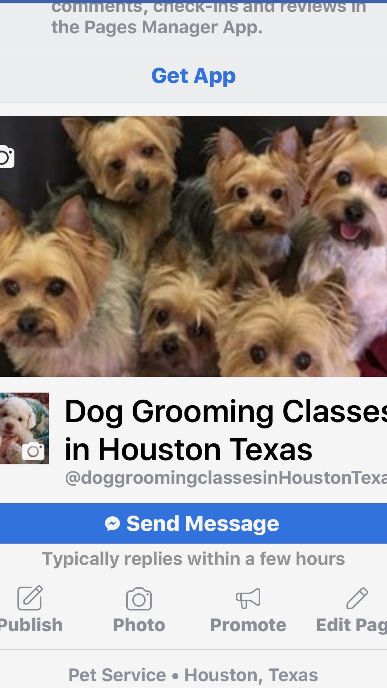 Dog Grooming Classes In Houston Texas Call 281 536 0314 Day And