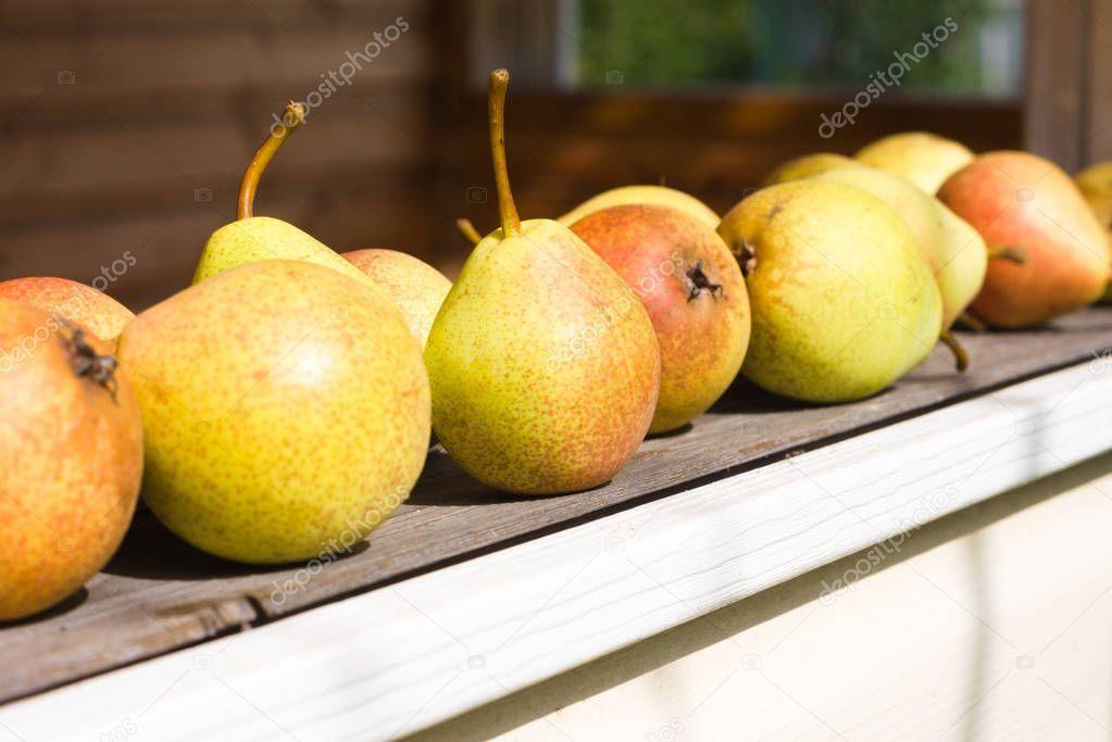 Ripe pears on a windowsill in a rustic house. Harvest season - Stock Phot , #Affiliate, #windowsill, #rustic, #Ripe, #pears #AD