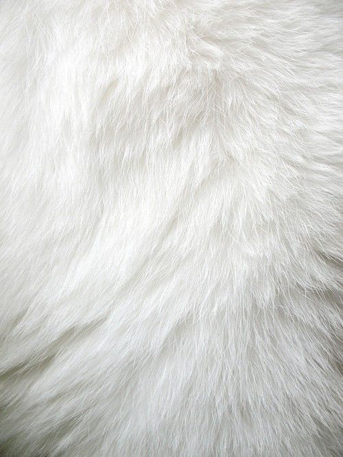 white fur rug fun fur white world pinterest blanc couleur et blanc couleur. Black Bedroom Furniture Sets. Home Design Ideas