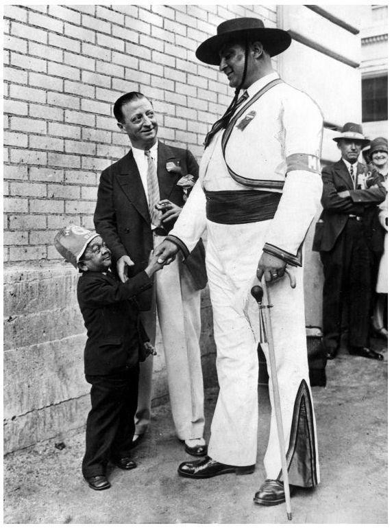 Dwarf giant height jolly midget midgit shorty tall