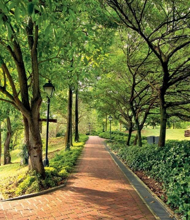 The best picnic spots in Singapore, plus what food to take ...