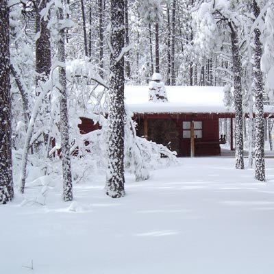 Winter Hideaway In 2019 Winter Cabin Snowy Woods