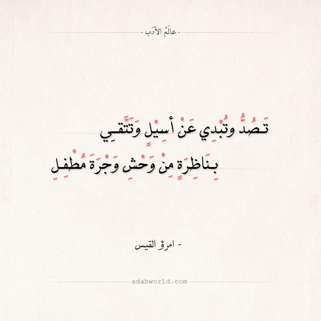 شعر امرؤ القيس تصد وتبدي عن أسيل وتتقي عالم الأدب Quran Quotes Inspirational Arabic Poetry Arabic Quotes With Translation