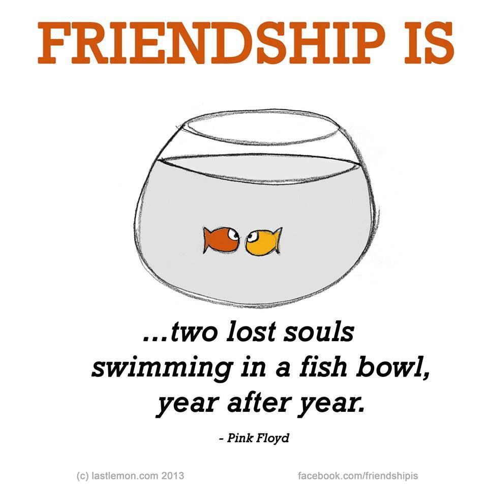 Quotes About Lost Friendships Friendship Is  Friendship  Pinterest  Friendship Happiness And